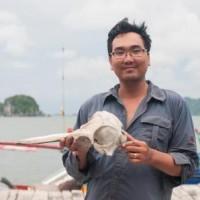 Vietnam Cetacean © Vu Long