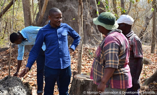 CLP News Embedded images - Makala field