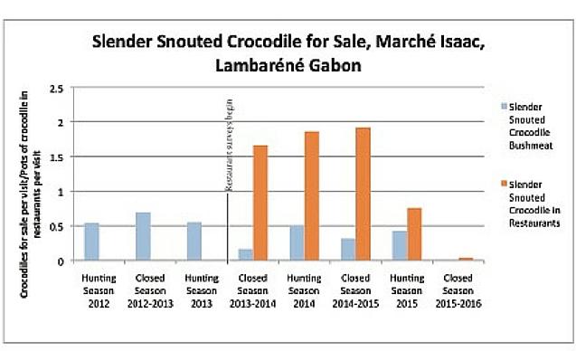 CLP News Embedded images - Gabon croc chart