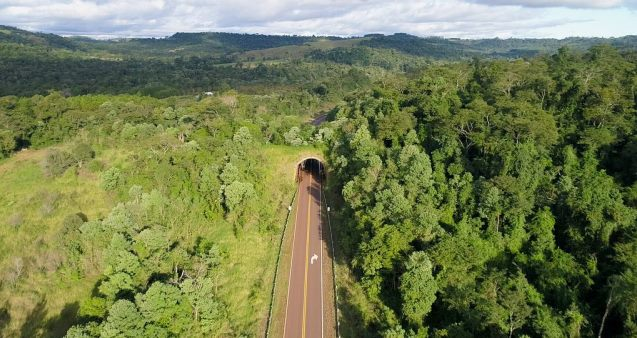 Ecoduct (Credit: Conservacion Argentina)